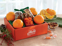 Healthful Snack Box - Get Well