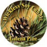 Wickless Candle Pine